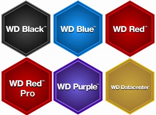 WD Bland Logos